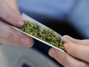 cannabis-afpgtv2