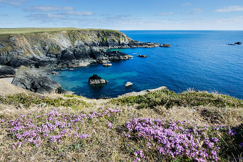 Plan your Year of Discovery in Pembrokeshire with Coast to Coast – The Pembrokeshire Herald