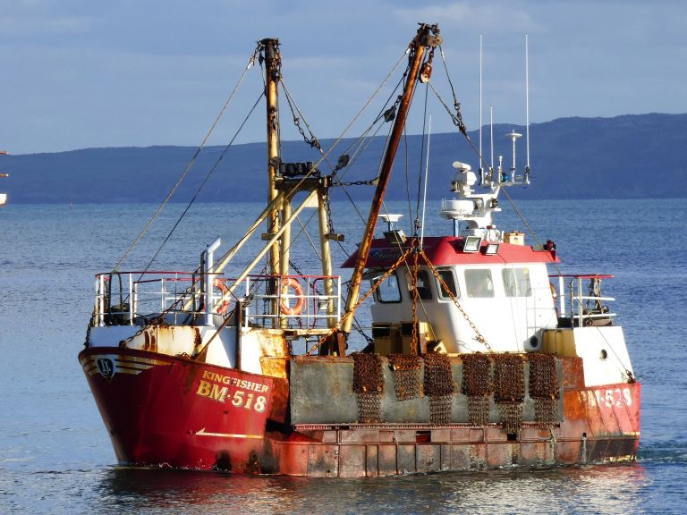 Fishing company fined £7,500 for illegal scallop catch – The Pembrokeshire Herald